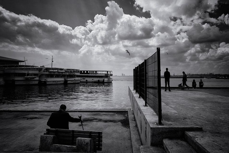 09._Pınar_Sener_Kose