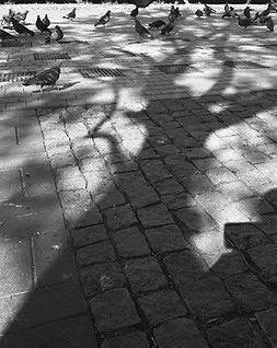 01_Arzu_Altıer.jpg