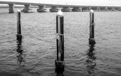 pylons.jpg