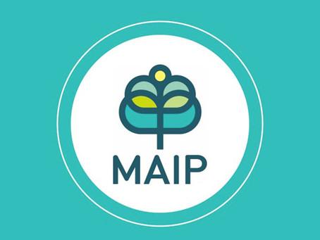 MAIP - The Online Internship Experience