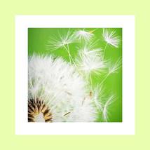 blm website recensiefoto 2.jpg
