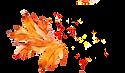 Autumn%252520Wreath_edited_edited_edited