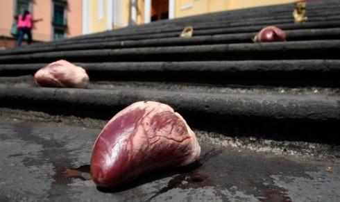 Se registran 44 feminicidios en lo que va del año en Veracruz