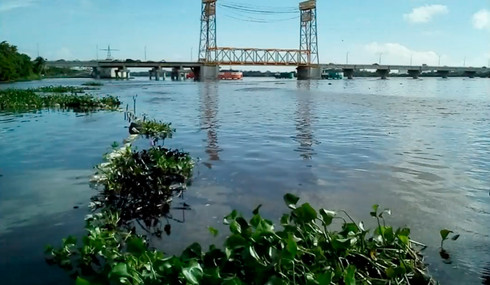 Interpone Ayuntamiento denuncia por fuga de hidrocarburo en río Coatzacoalcos
