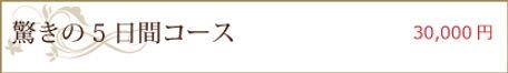 menu_have01.jpg