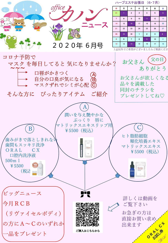 カノンニュース06月.jpg