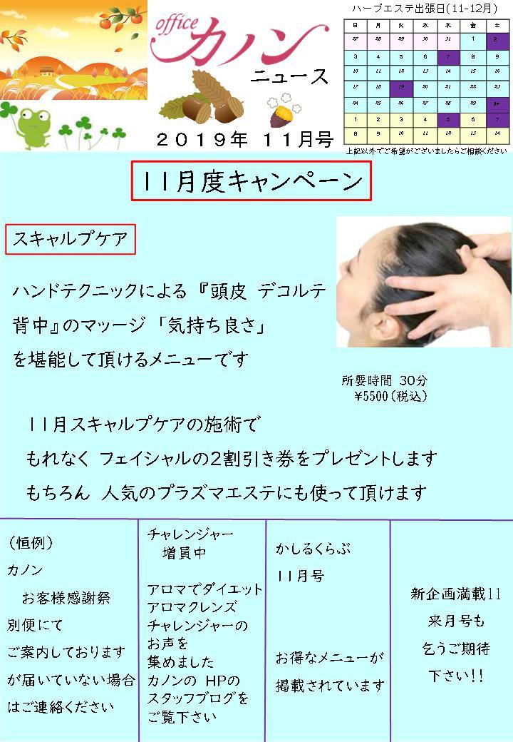 カノンニュース11月.jpg