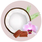 CocoaNCoconut.png