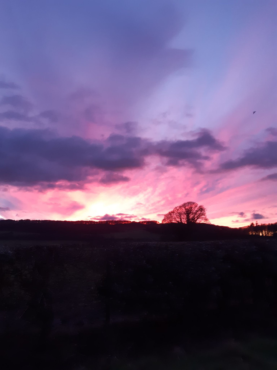 Christmas Eve Eve Sunset