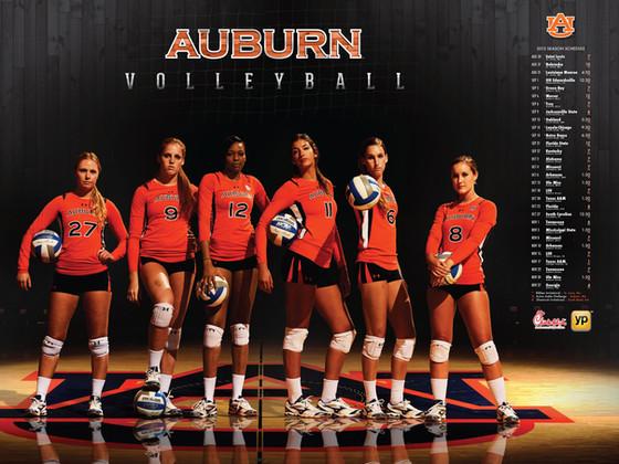 Auburn Volleyball Poster