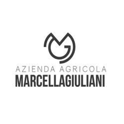 Marcella Giuliani a Vinòforum Cla