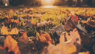 5 Spiritual Day Trips To Take This Fall