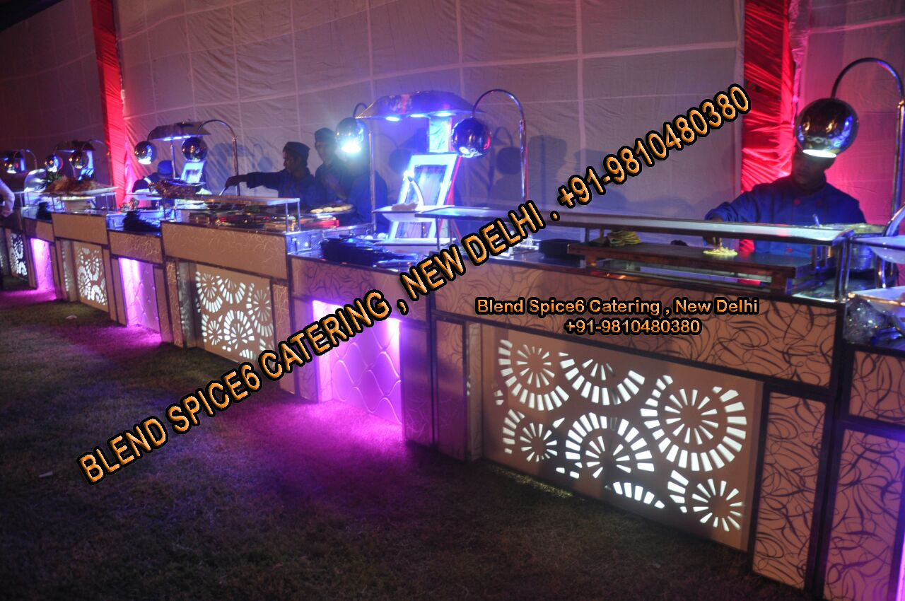 purani dilli caterer barbeque catering delhi south delhi  caterer catering