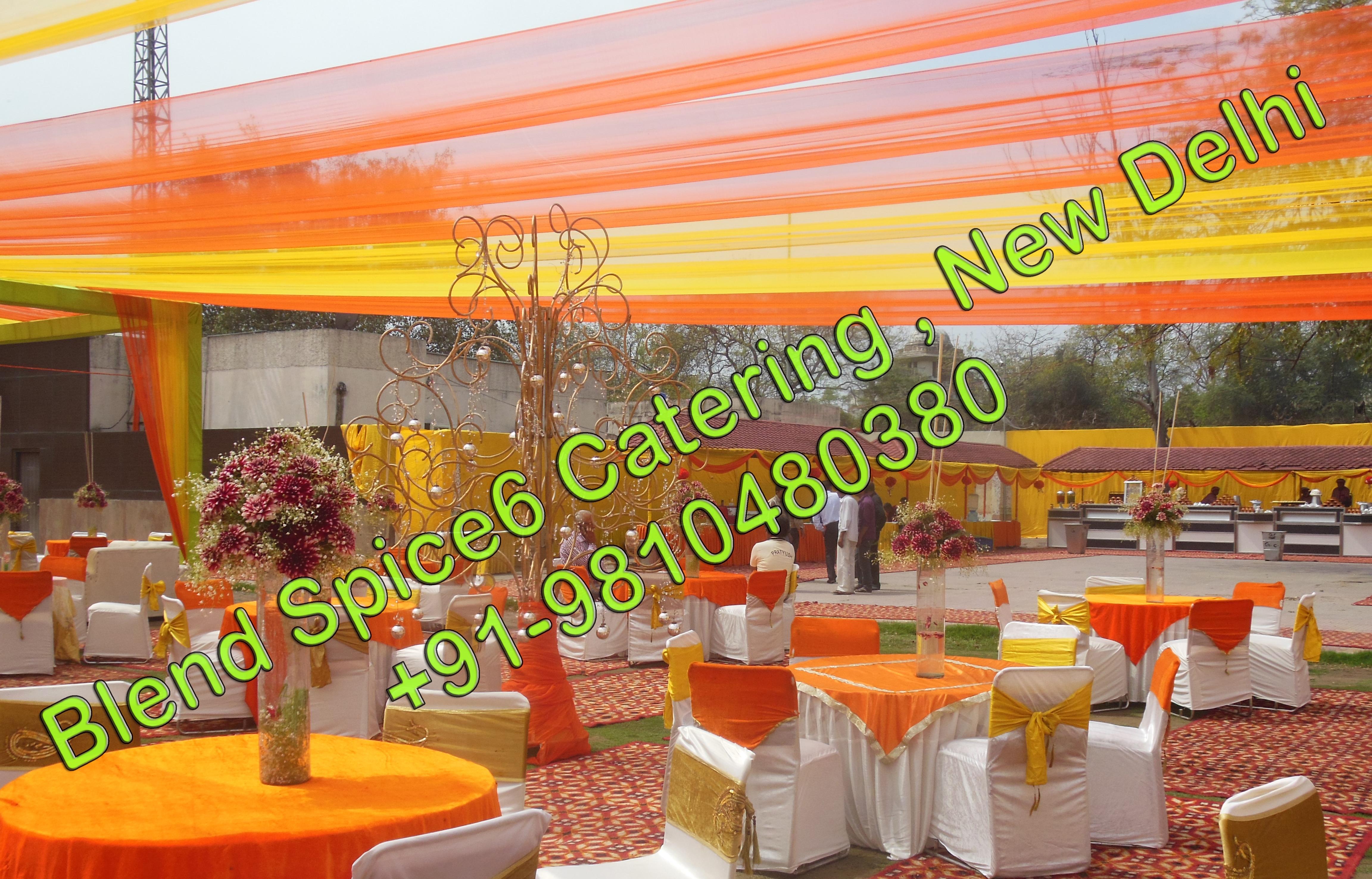 pureveg caterer vegetarian catering delhi