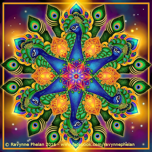 Peacock Mandala Limited Edition Print