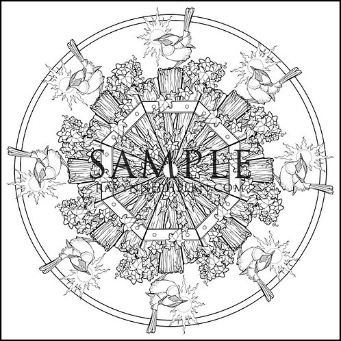 Wren Mandala Colouring Page