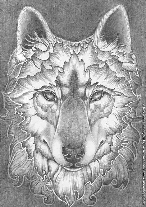 Wolf GS