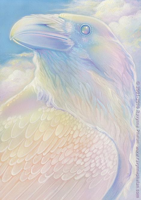 Cloud Raven