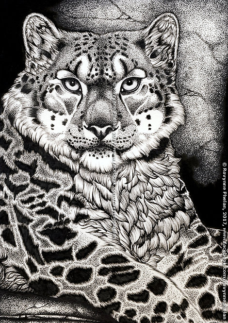 Snow Leopard Ink