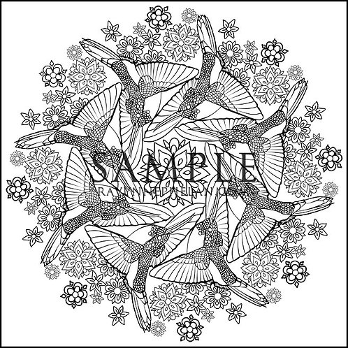 Hummingbird Mandala Colouring Page