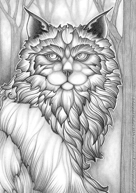 Ghost Cat GS