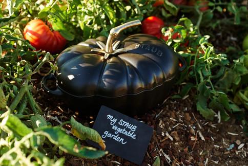 Cocotte tomate noir de crimée
