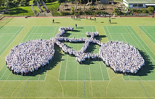 217126_largest_human_bicycle_Auckland.jp