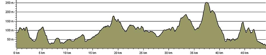 Ham & Lyme 100k/50k   albion running