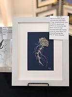 art jellyfish.png