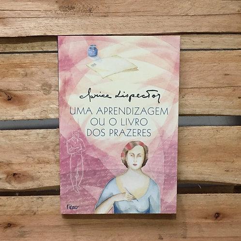 Uma aprendizagem ou o livro dos prazeres - Clarice Lispector