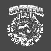 gratefuldeadithaca2.png