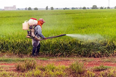 Copy of pesticide-use.jpg