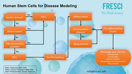 Modeling disease with Human stem cells