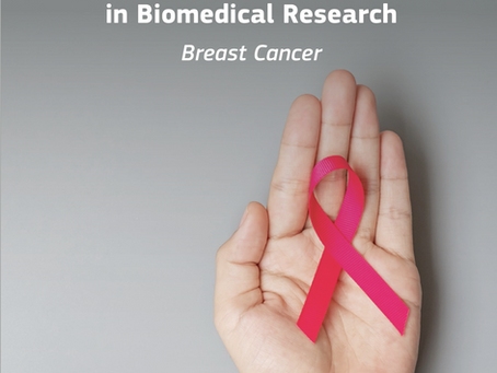 Advanced Non-animal Models in Biomedical Research - BREAST CANCER