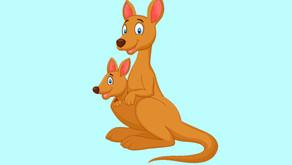 Kangoeroes: Muziek/zingen