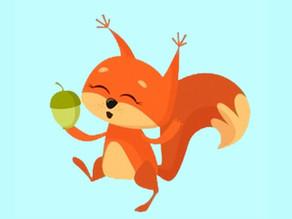 Eekhoorns: De leeshoek