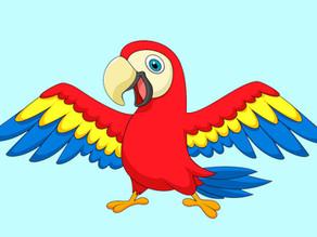 Papegaaien: Muziek/zingen