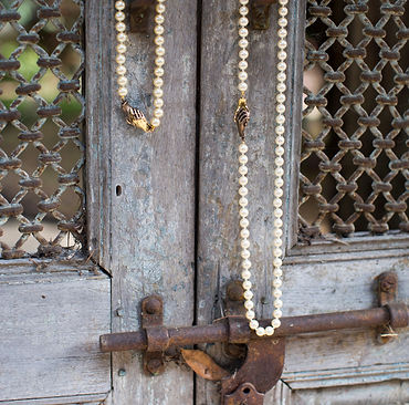 UNITY - Majorcas on Vintage Door.jpg