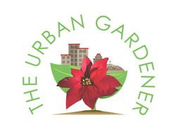 The Urban Gardener Holiday Lights