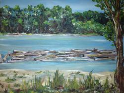 Fraser River Views - SOLD