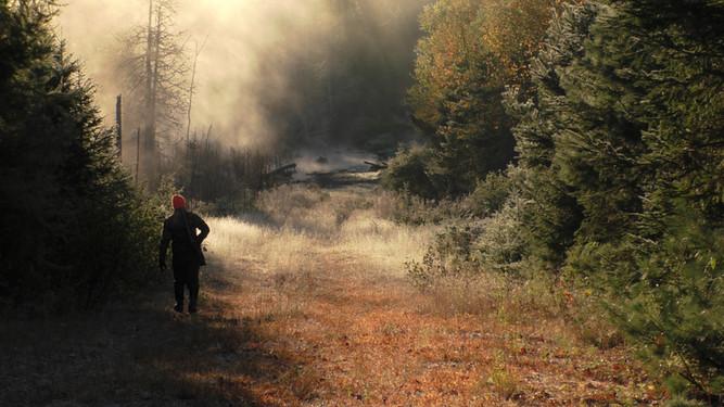 scenery during moose hunt