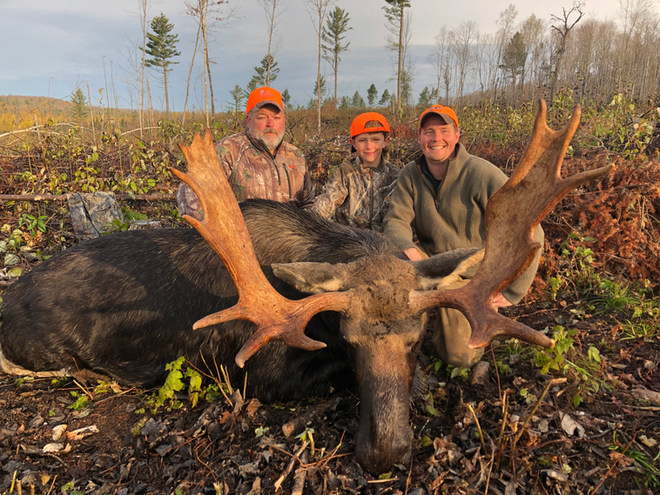 Guided Maine Moose Hunt