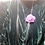 Thumbnail: Collar Rosa