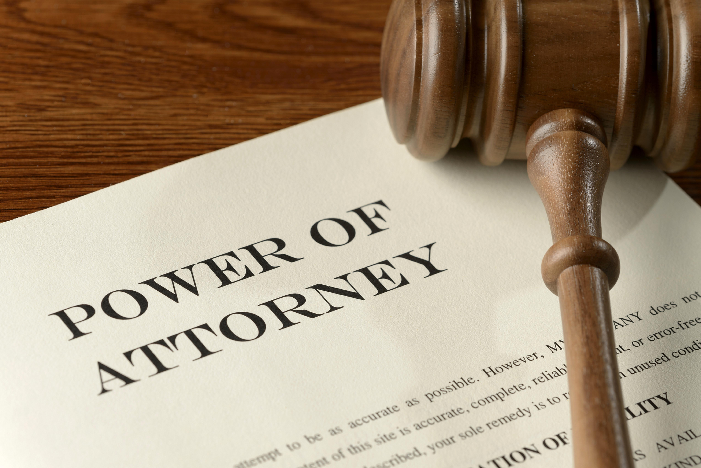 法人設立およびビザコンサルティング