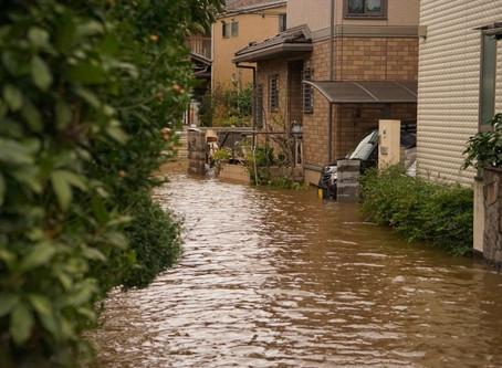 【ケース別】豪雨災害・洪水で請求できる意外な保険