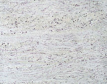 Amba-White3cm-Close-up-344x199cm.jpg