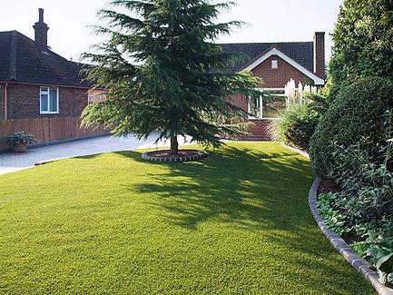 004-everest-greener-grass-front.jpg