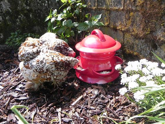 Ceramic Chicken Feeder, Large