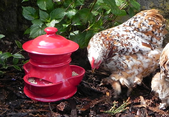 Ceramic Chicken Feeder,  Small