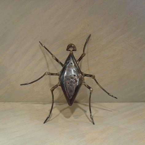 scarabée 90 euros